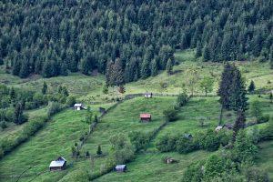 satul brosteni