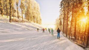 vacanta reusita la schi