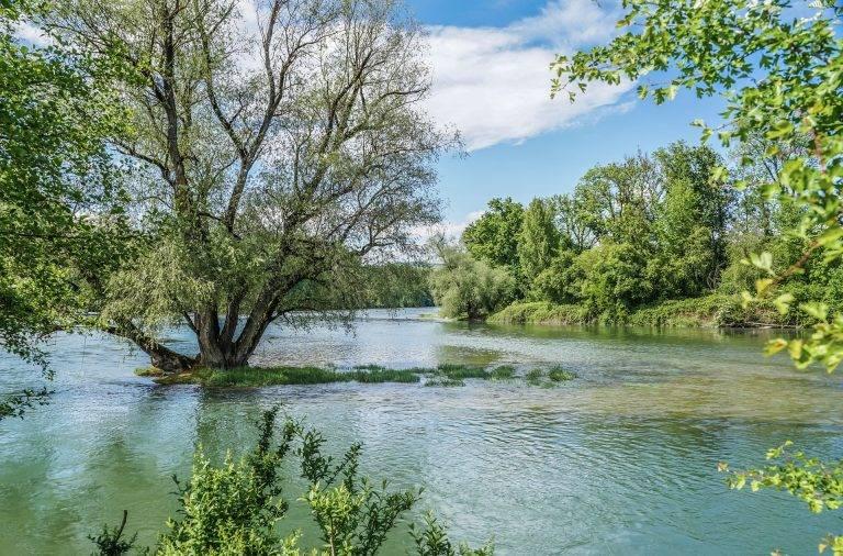 Cum ajungi la Padurea Letea