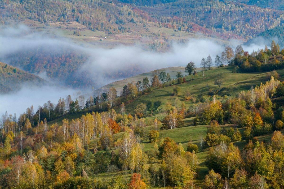 Top atractii turistice in Arieseni